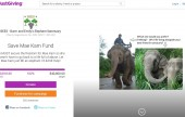 Save Mae Kim JustGiving Campaigns page